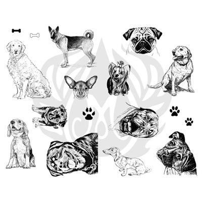DSS-119 Dogs