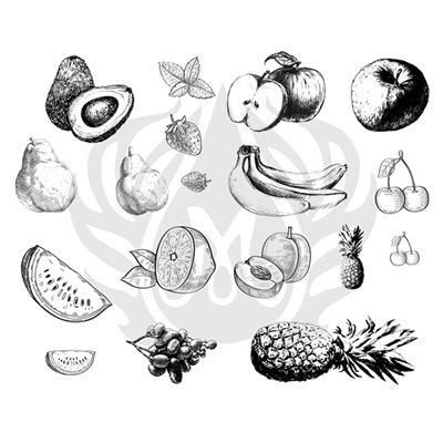 DSS-121 Fruits