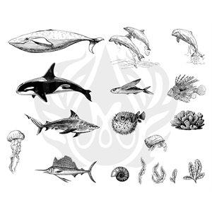 DSS-131 Sea Life 2
