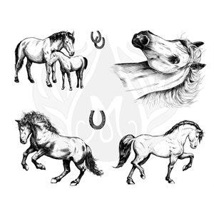 DSS-0151-Horses