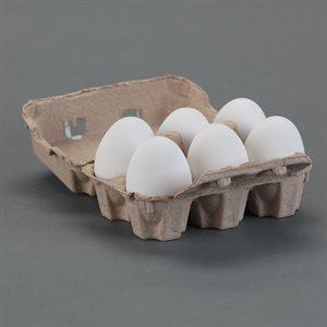 Egg 6 Carton Pack