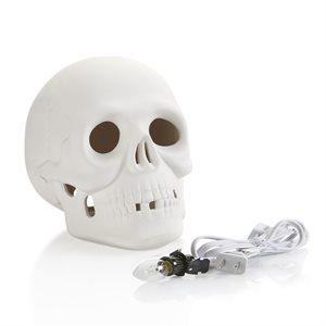 Skull w / Light Kit