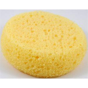 Synthetic Sponge
